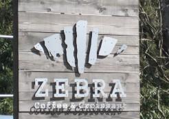 zebra外観